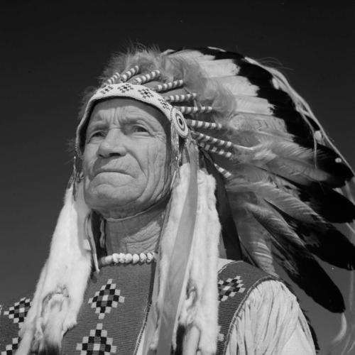Indigenous Pioneer