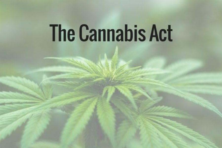 Bill to legalize cannabis in Canada moves forward in Senate