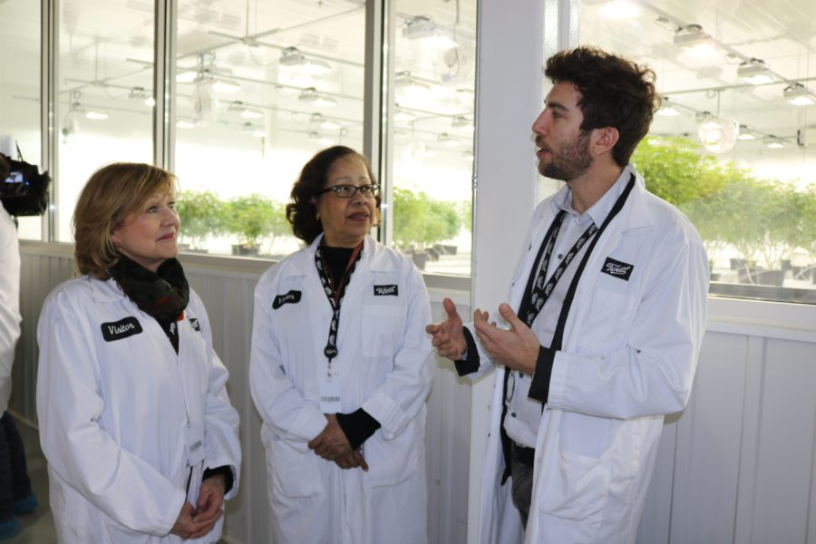 Senator Diane Bellemare (left) and Senator Marie-Françoise Mégie (centre) speak to an employee at a licensed cannabis production facility in Smiths Falls, Ont., on February 12.