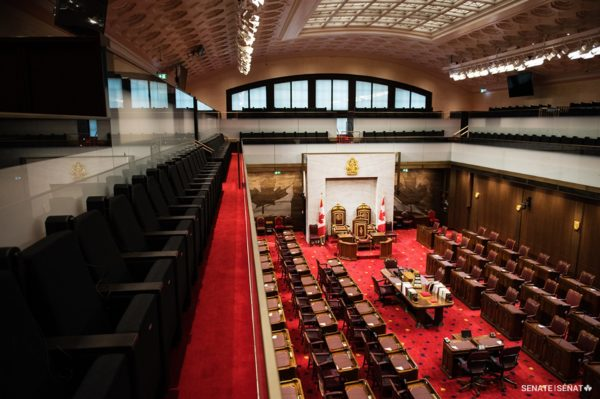 Senate adopts legislation in response to COVID-19