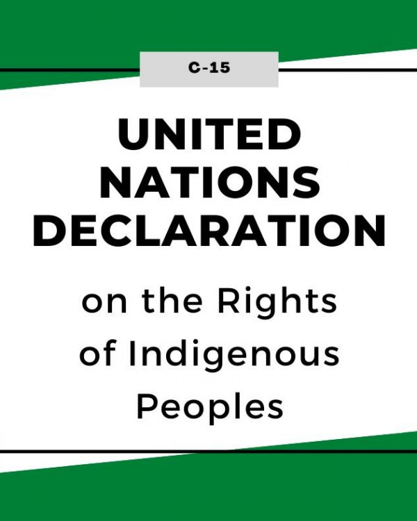 UNDRIP legislation passes into law